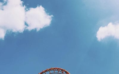 Rollercoaster Life…